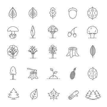 Tree types linear icons set