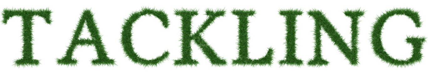 Tackling - 3D rendering fresh Grass letters isolated on whhite background.