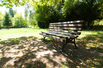 Old bench in the park.