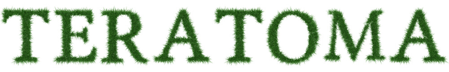 Teratoma - 3D rendering fresh Grass letters isolated on whhite background.