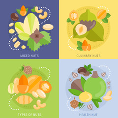 Set Vector Flat Banners about Nuts