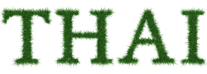 Thai - 3D rendering fresh Grass letters isolated on whhite background.