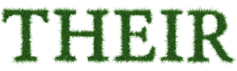 Their - 3D rendering fresh Grass letters isolated on whhite background.