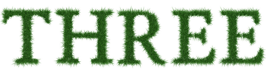 Three - 3D rendering fresh Grass letters isolated on whhite background.