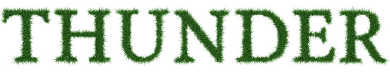 Thunder - 3D rendering fresh Grass letters isolated on whhite background.