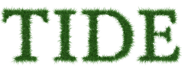 Tide - 3D rendering fresh Grass letters isolated on whhite background.