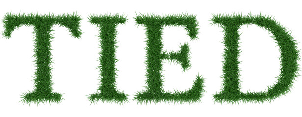 Tied - 3D rendering fresh Grass letters isolated on whhite background.