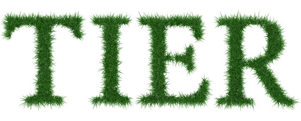 Tier - 3D rendering fresh Grass letters isolated on whhite background.