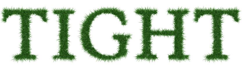Tight - 3D rendering fresh Grass letters isolated on whhite background.