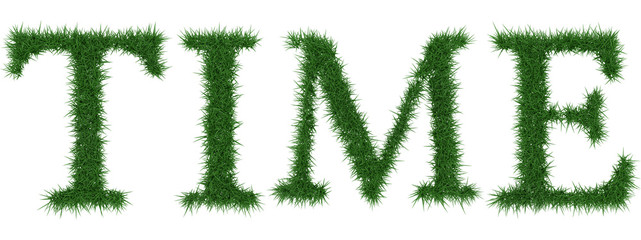 Time - 3D rendering fresh Grass letters isolated on whhite background.