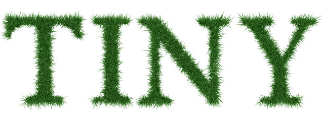Tiny - 3D rendering fresh Grass letters isolated on whhite background.