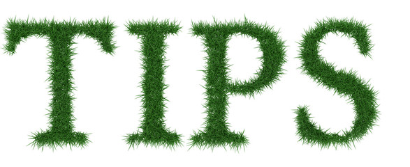 Tips - 3D rendering fresh Grass letters isolated on whhite background.