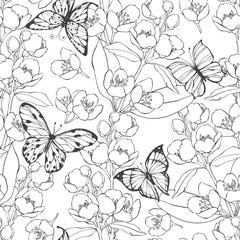 Seamless pattern with blossoming branches of jasmine and butterflies on white background.  Black and white contour illustration.