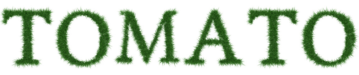Tomato - 3D rendering fresh Grass letters isolated on whhite background.