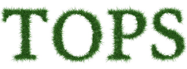 Tops - 3D rendering fresh Grass letters isolated on whhite background.