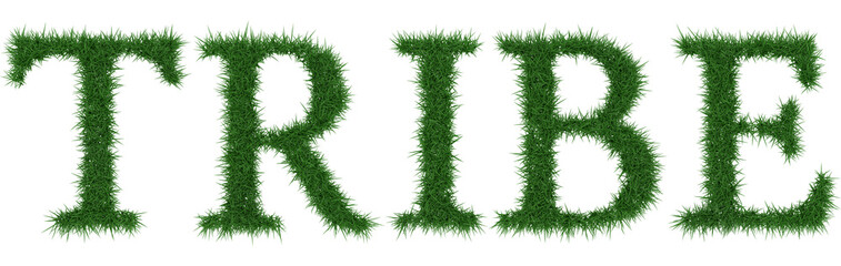 Tribe - 3D rendering fresh Grass letters isolated on whhite background.
