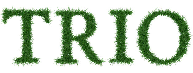 Trio - 3D rendering fresh Grass letters isolated on whhite background.