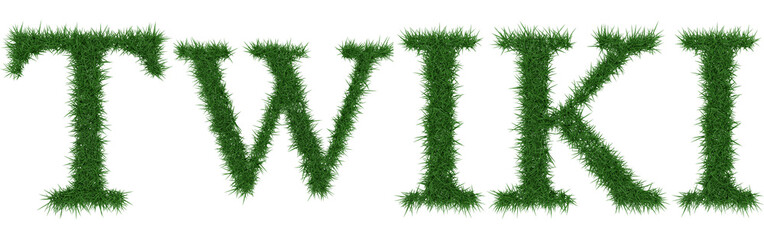 Twiki - 3D rendering fresh Grass letters isolated on whhite background.