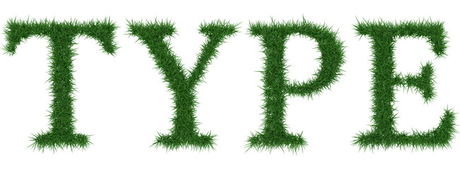 Type - 3D rendering fresh Grass letters isolated on whhite background.