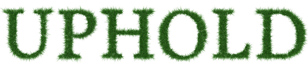 Uphold - 3D rendering fresh Grass letters isolated on whhite background.