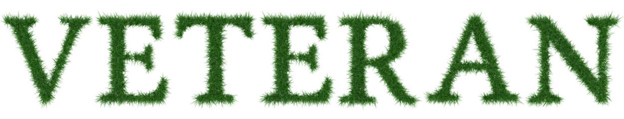 Veteran - 3D rendering fresh Grass letters isolated on whhite background.
