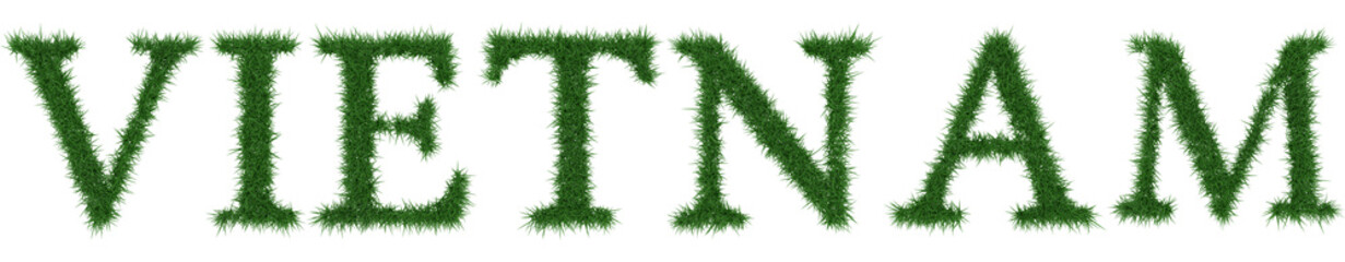 Vietnam - 3D rendering fresh Grass letters isolated on whhite background.