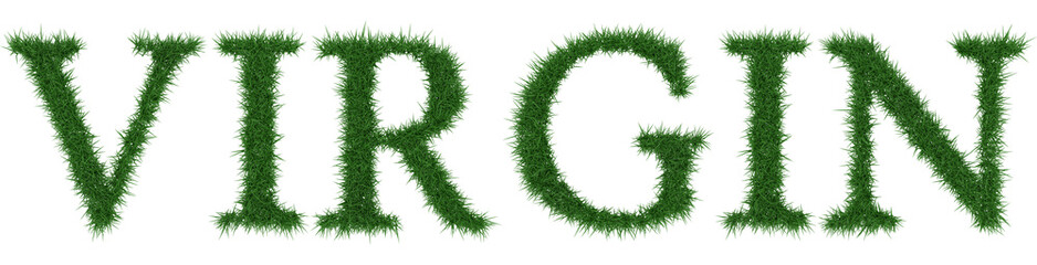 Virgin - 3D rendering fresh Grass letters isolated on whhite background.