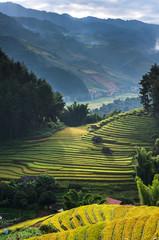 Autocollant pour porte Les champs de riz Top view of Rice terraced fields on Mu Cang Chai District, YenBai province, Northwest Vietnam