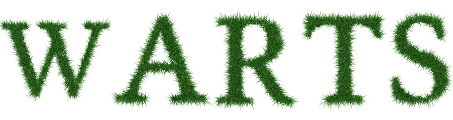 Warts - 3D rendering fresh Grass letters isolated on whhite background.