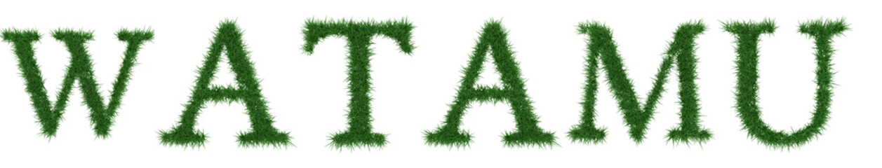 Watamu - 3D rendering fresh Grass letters isolated on whhite background.