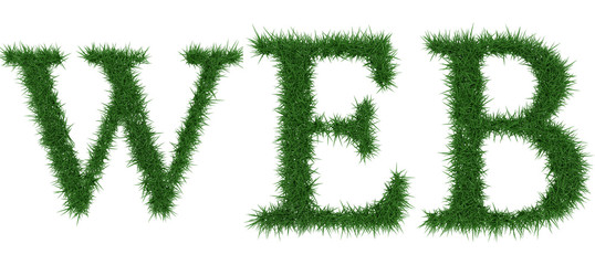 Web - 3D rendering fresh Grass letters isolated on whhite background.