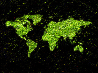 Green moss in shape of world map