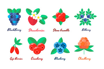vector illustration. set berries. strawberries, blueberries, blu