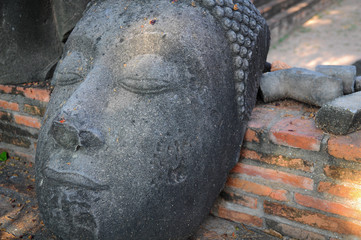 Statue of Buddha's head on the ground / Statue of Buddha's head on the ground in Mahathat temple, Ayutthaya province, Thailand