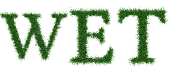 Wet - 3D rendering fresh Grass letters isolated on whhite background.