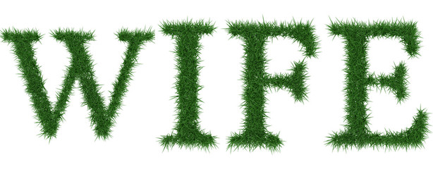 Wife - 3D rendering fresh Grass letters isolated on whhite background.