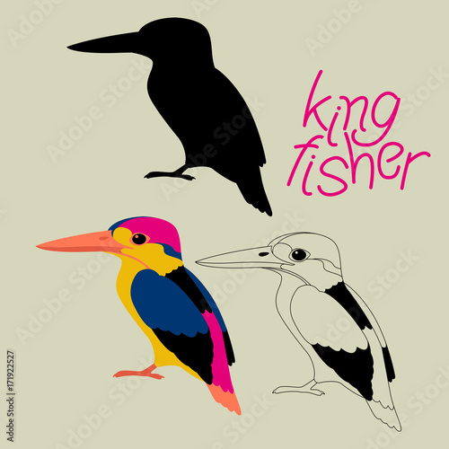 Kingfisher Bird Vector Illustration Black Silhouette Line Drawing