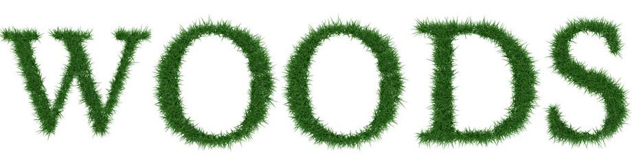 Woods - 3D rendering fresh Grass letters isolated on whhite background.