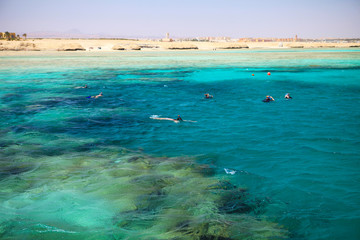 People snorkeling in a beautiful coral reef near Port Ghalib. Marsa Alam, Egypt