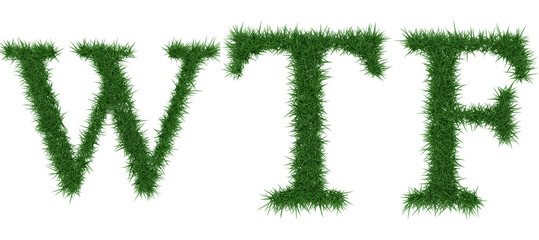 Wtf - 3D rendering fresh Grass letters isolated on whhite background.
