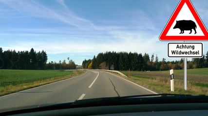 cts4 CarTrafficSign - german: Verkehrsschild - Achtung Wildwechsel - Wildschwein - Gefahr durch Wildtiere - english: sus scrofa - wild boar - heavy wildlife traffic - 16zu9 g5523