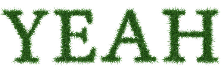 Yeah - 3D rendering fresh Grass letters isolated on whhite background.