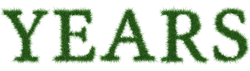 Years - 3D rendering fresh Grass letters isolated on whhite background.