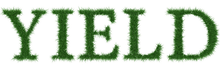 Yield - 3D rendering fresh Grass letters isolated on whhite background.