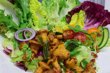 Gebratene Pfifferlinge mit Salat