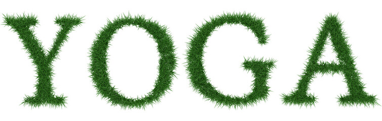 Yoga - 3D rendering fresh Grass letters isolated on whhite background.