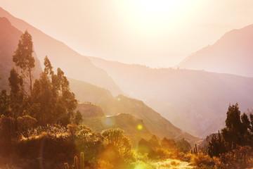 Staande foto Canyon Colca canyon