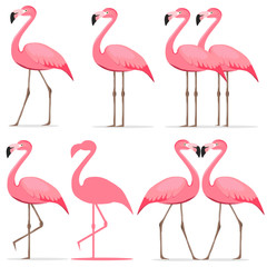 Canvas Prints Flamingo Flamingo, a set of pink flamingos.