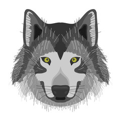 A wolf, a wolf's head