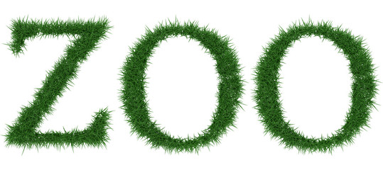 Zoo - 3D rendering fresh Grass letters isolated on whhite background.